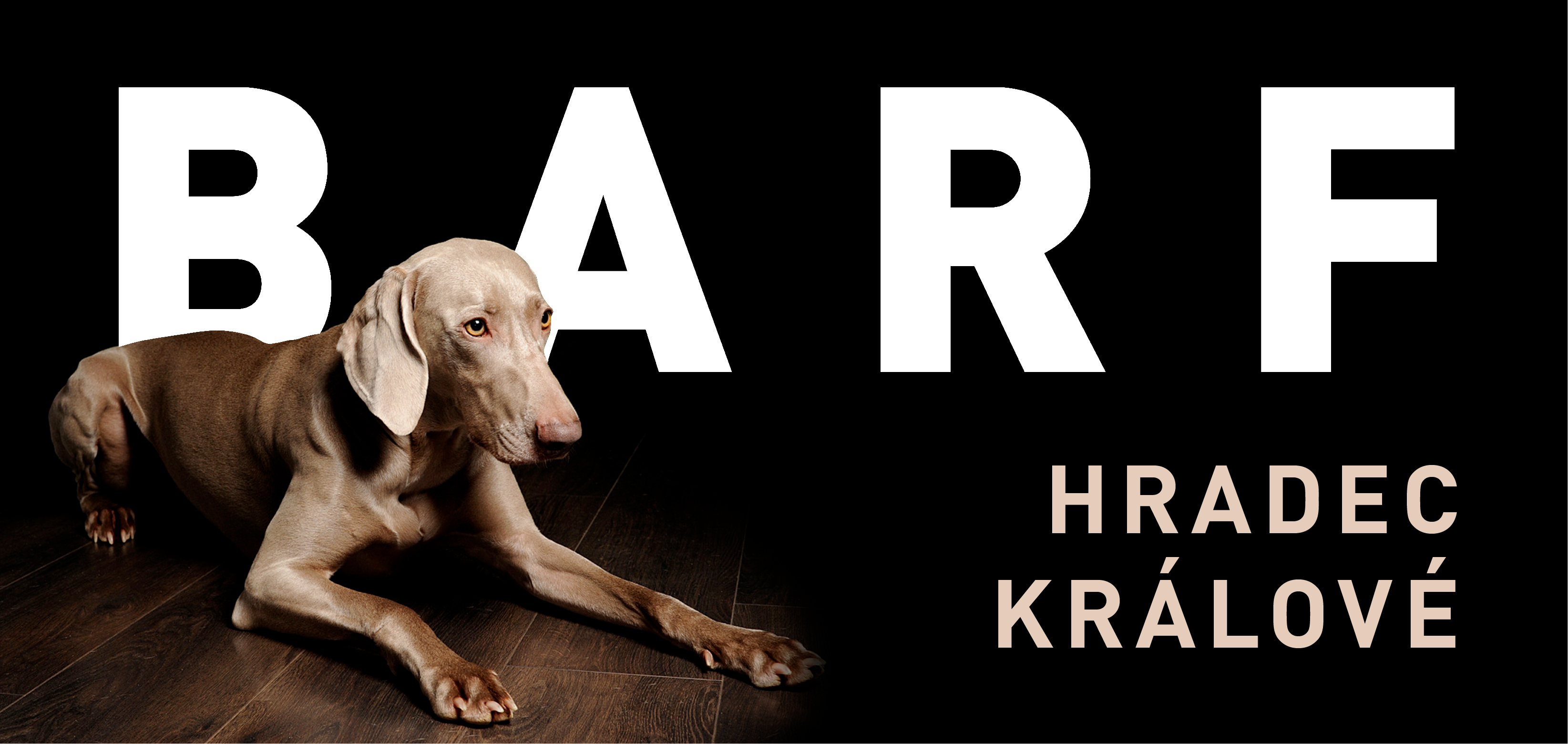 Vítá Vás BARF Hradec Králové – prodejna mraženého masa, kvalitních granulí a doplňků pro psy a kočky